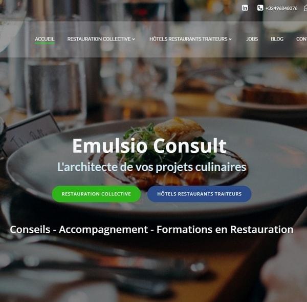 Site web d'Emulsio Consult